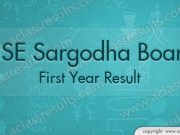 Sargodha board First Year Result 2018